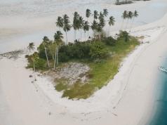 Mengintip Surga Bahari kekayaan biota laut Kalimantan di Pulau Derawan surganya para pencinta diving