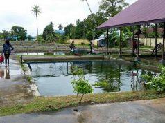 Kukar Jadikan Balai Benih Ikan Desa Perjiwa Objek Wisata