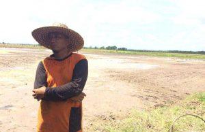 Petani Desa Sri Raharja Berharap Perbaikan Jalan dan Irigasi - headlinekaltim.co